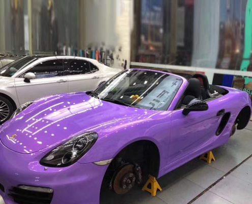 Magic Gold Purple Car Wrap 2010